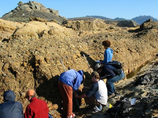 Sed-strat students at Point Lobos